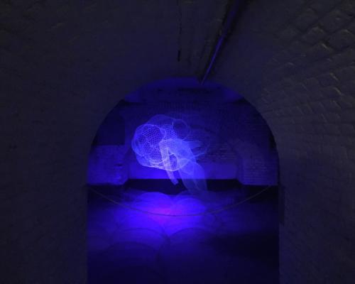 Dik Box, Solo_tentoonstelling Fort bij Asperen 2018